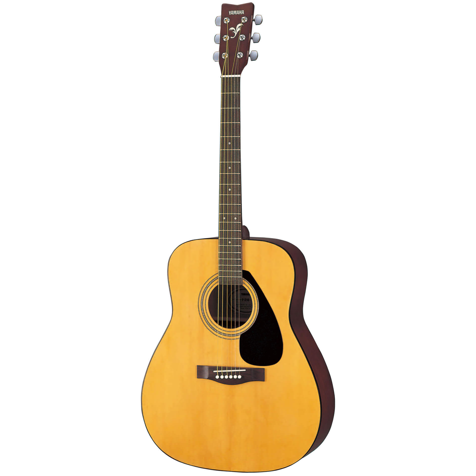 Все виды гитар картинки